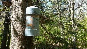 Cannister on Fir Mountain