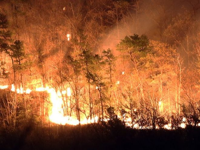 2,000 acre forest fire in Shawangunk Ridge and Roosa Gap State Forests.  Credit:  lohud
