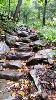 McKenley Hollow Staircase of Boulders